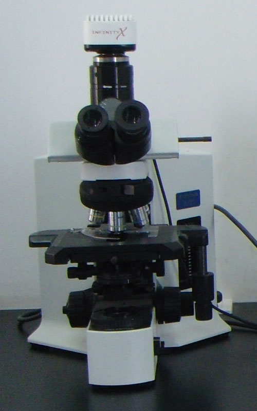 大型宝都棋牌代理 生物图象显微分析系统